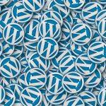 wordpress categorie optimaliseren